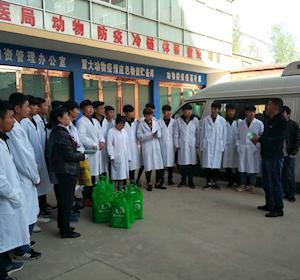 畜牧兽医系学生春季防疫活动